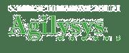 partnerLogos_Agilysys